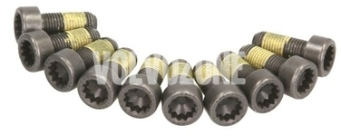Flywheel bolts 10x kit P80 X40 P1 P2 P3